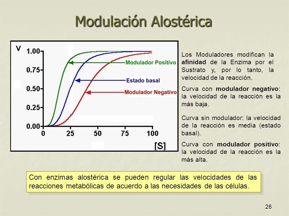 Modulación Alostérica