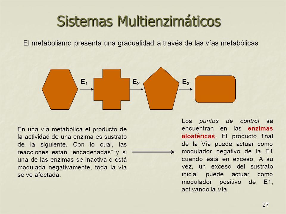 Sistemas Multienzimáticos