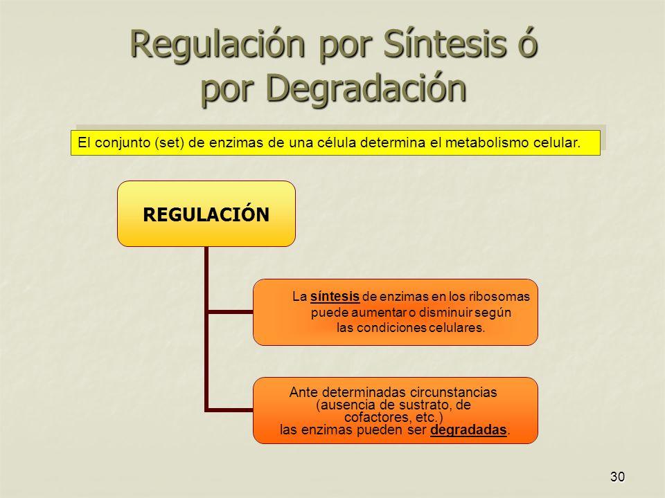 Regulación por Síntesis ó por Degradación