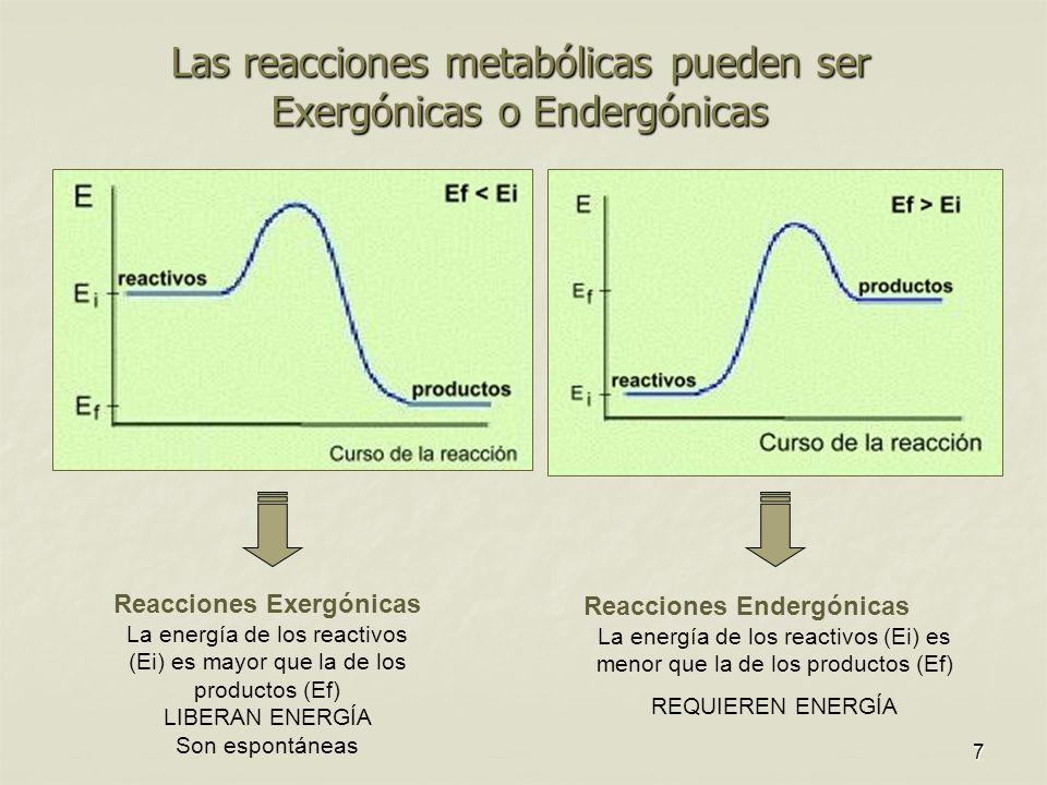 Las reacciones metabólicas pueden ser Exergónicas o Endergónicas