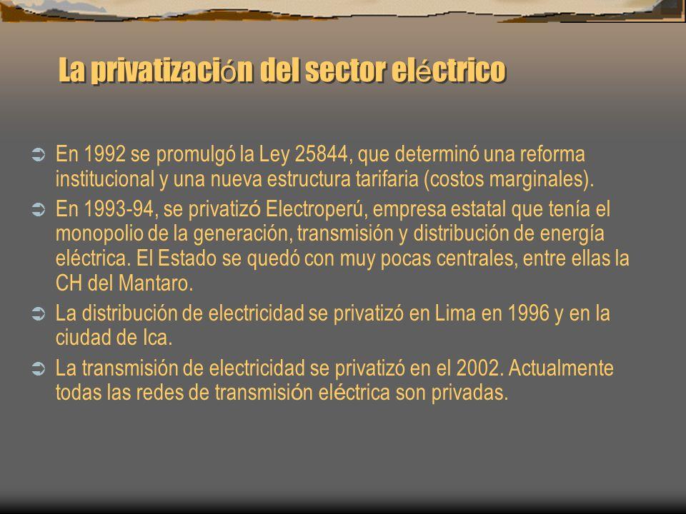 La privatización del sector eléctrico