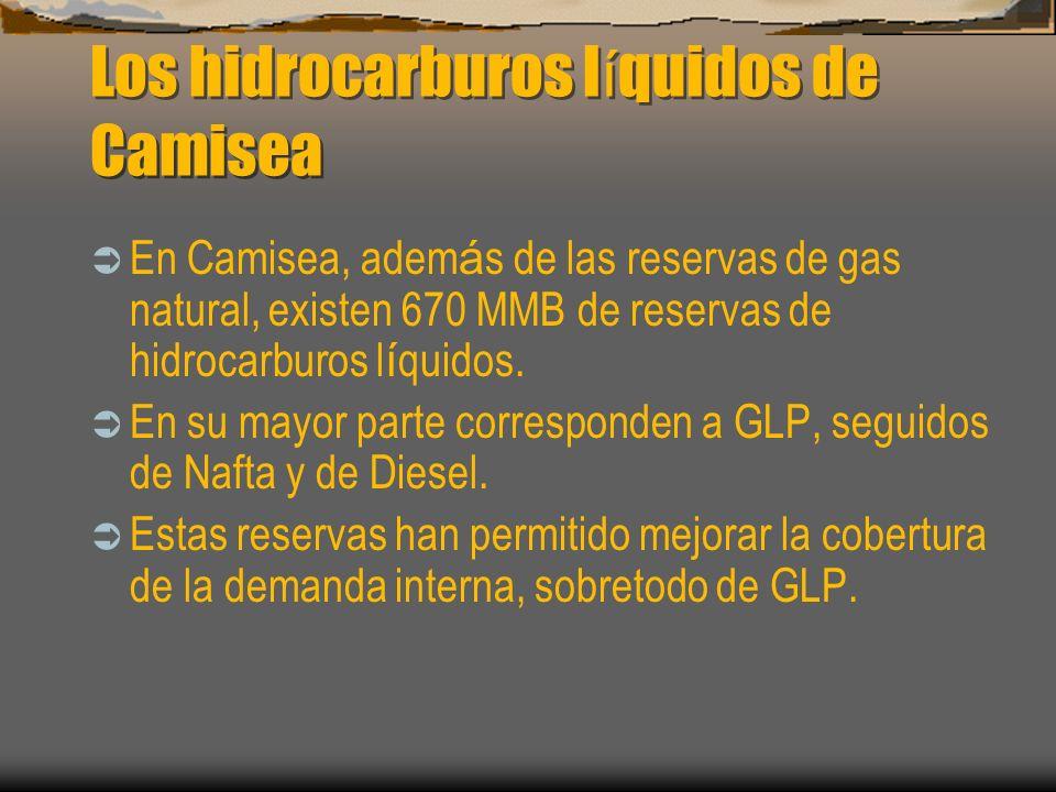 Los hidrocarburos líquidos de Camisea
