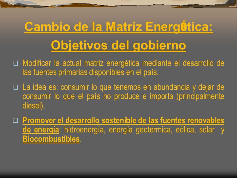 Cambio de la Matriz Energética: Objetivos del gobierno