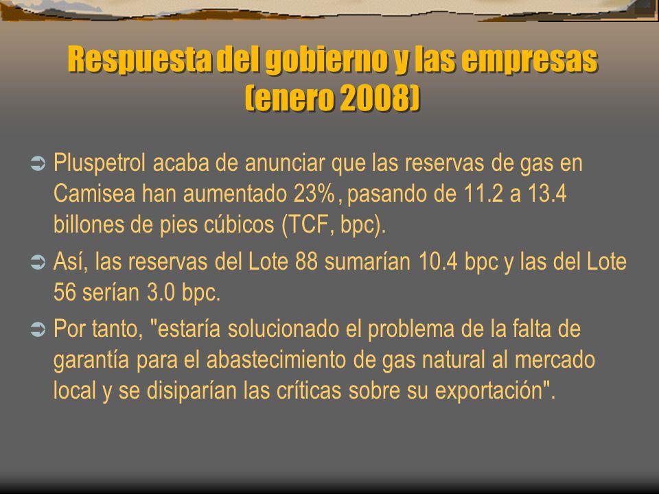 Respuesta del gobierno y las empresas (enero 2008)
