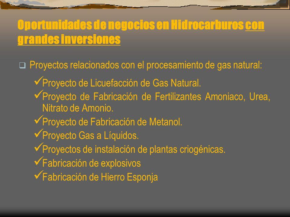 Oportunidades de negocios en Hidrocarburos con grandes inversiones