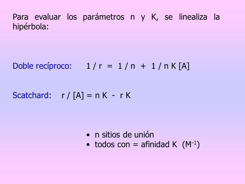 Para evaluar los parámetros n y K, se linealiza la hipérbola: