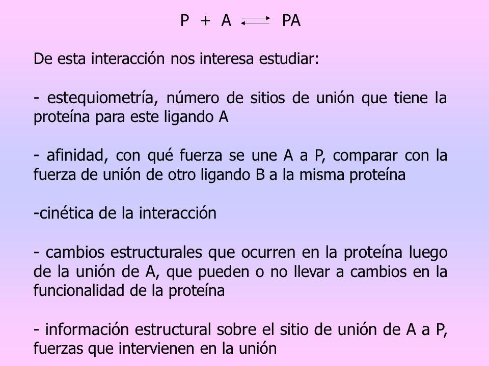 -cinética de la interacción
