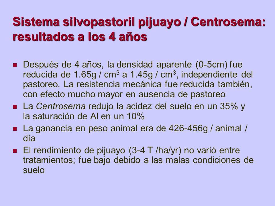 Sistema silvopastoril pijuayo / Centrosema: resultados a los 4 años