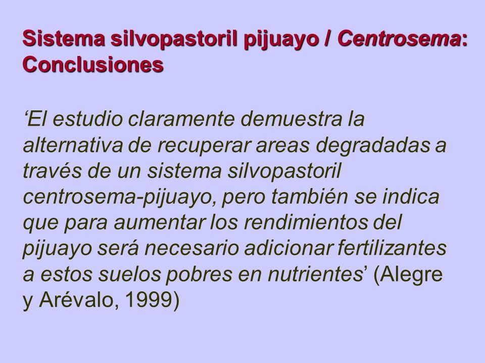Sistema silvopastoril pijuayo / Centrosema: Conclusiones