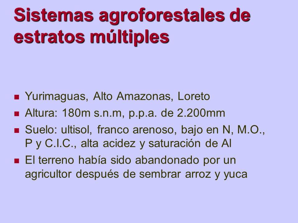 Sistemas agroforestales de estratos múltiples