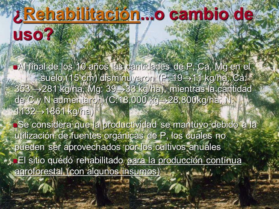 ¿Rehabilitación...o cambio de uso