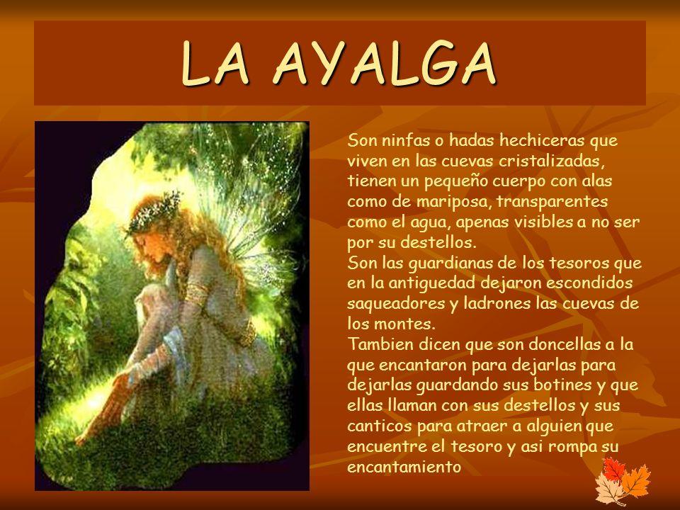 LA AYALGA
