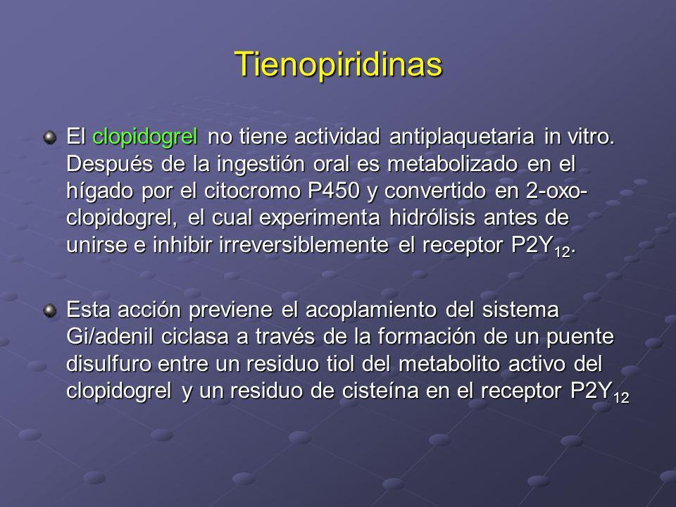 Tienopiridinas