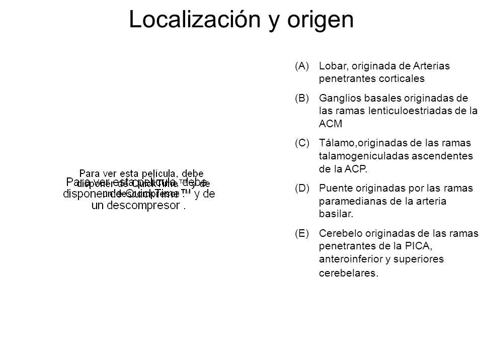Localización y origen Lobar, originada de Arterias penetrantes corticales. Ganglios basales originadas de las ramas lenticuloestriadas de la ACM.