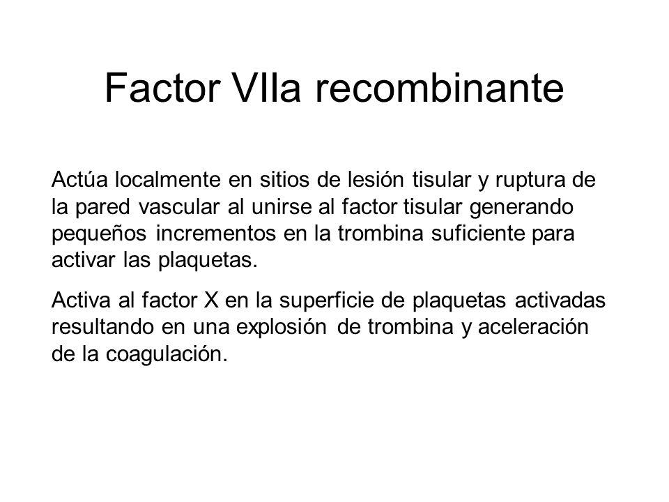Factor VIIa recombinante