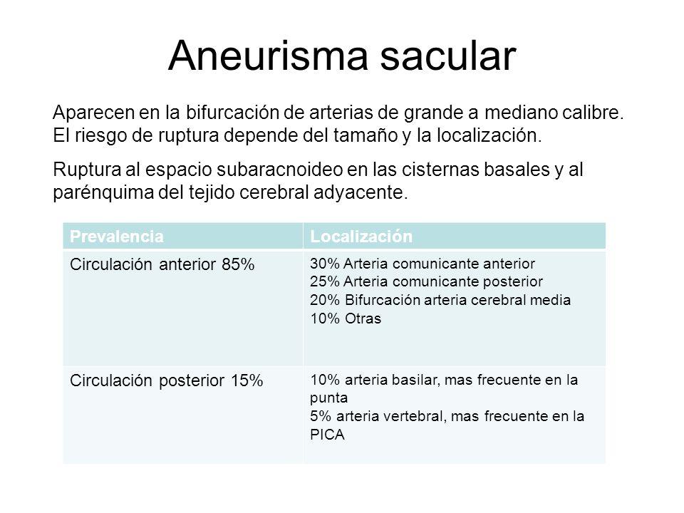 Aneurisma sacular Aparecen en la bifurcación de arterias de grande a mediano calibre. El riesgo de ruptura depende del tamaño y la localización.