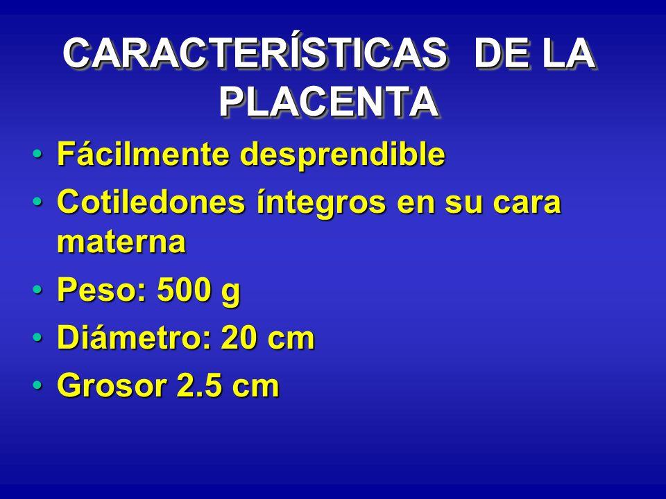CARACTERÍSTICAS DE LA PLACENTA