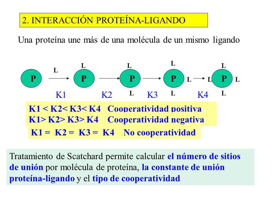 2. INTERACCIÓN PROTEÍNA-LIGANDO