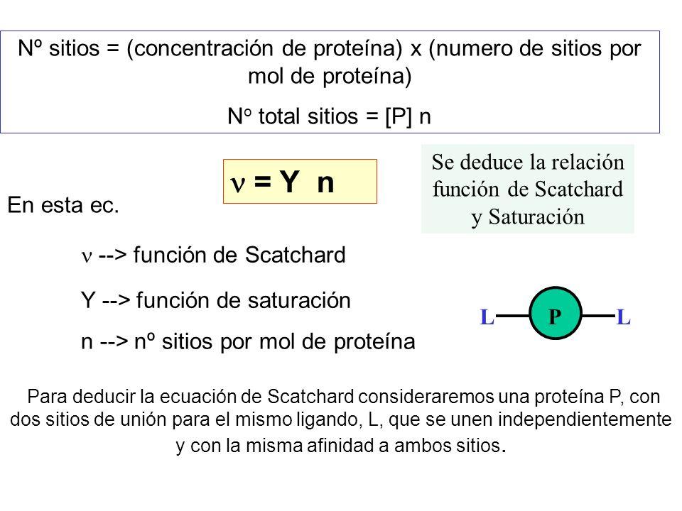 Se deduce la relación función de Scatchard y Saturación