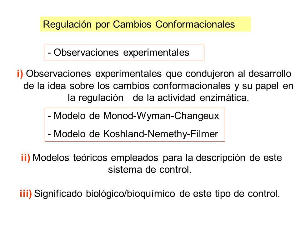 iii) Significado biológico/bioquímico de este tipo de control.