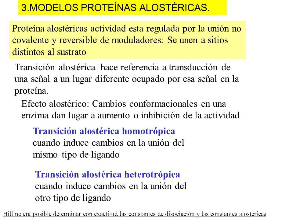 3.MODELOS PROTEÍNAS ALOSTÉRICAS.