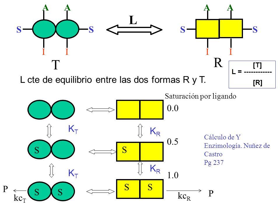 L cte de equilibrio entre las dos formas R y T.