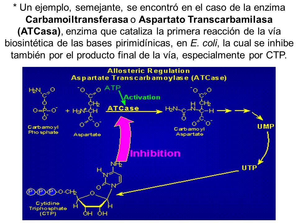* Un ejemplo, semejante, se encontró en el caso de la enzima Carbamoiltransferasa o Aspartato Transcarbamilasa (ATCasa), enzima que cataliza la primera reacción de la vía biosintética de las bases pirimidínicas, en E.