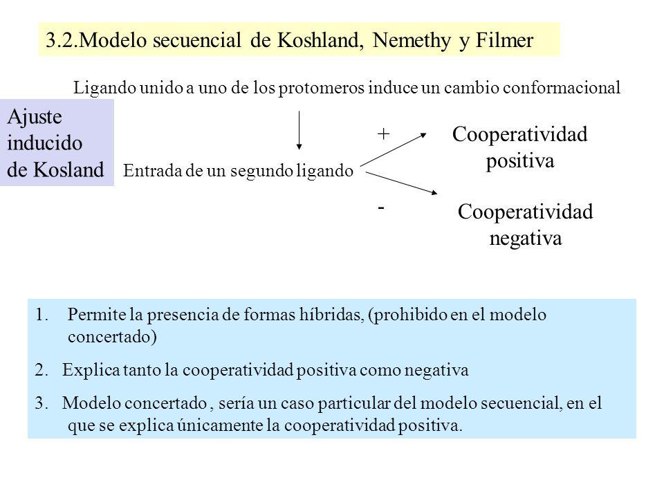 3.2.Modelo secuencial de Koshland, Nemethy y Filmer