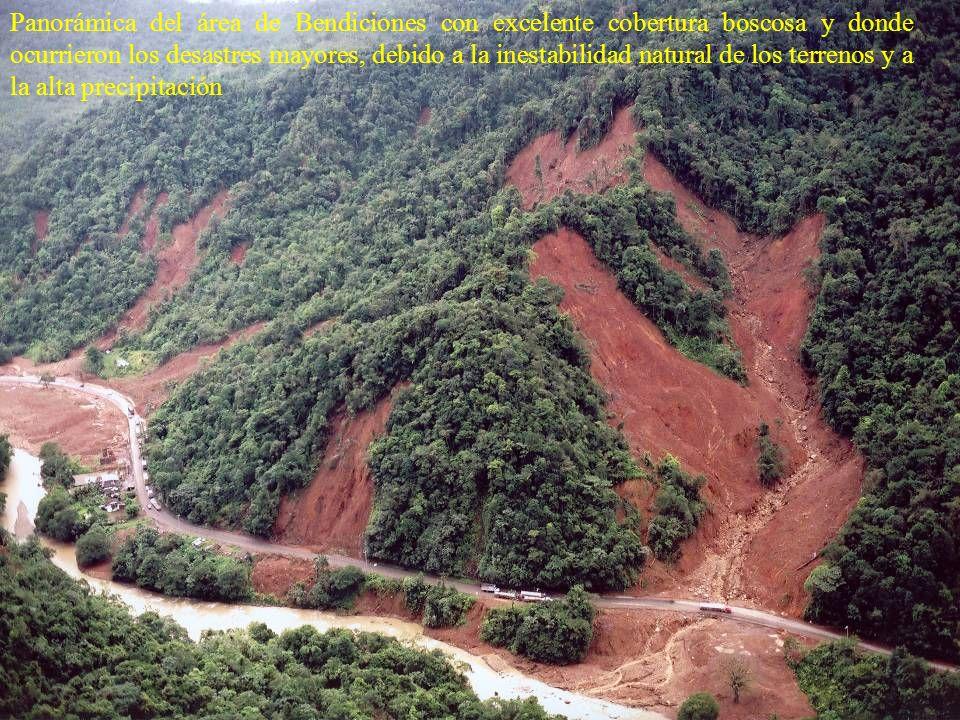 Panorámica del área de Bendiciones con excelente cobertura boscosa y donde ocurrieron los desastres mayores, debido a la inestabilidad natural de los terrenos y a la alta precipitación