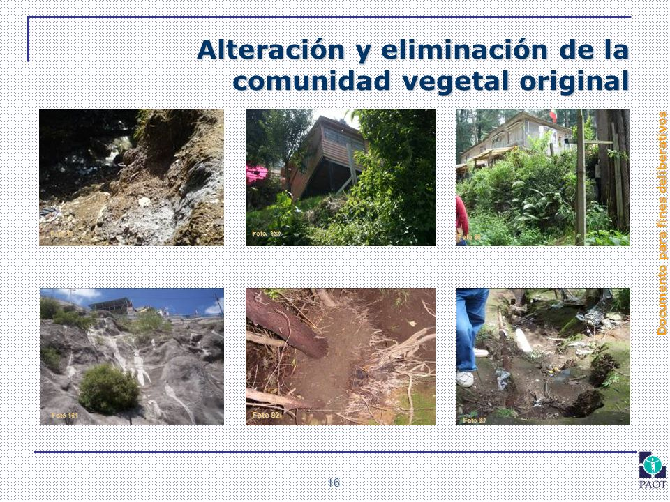Alteración y eliminación de la comunidad vegetal original