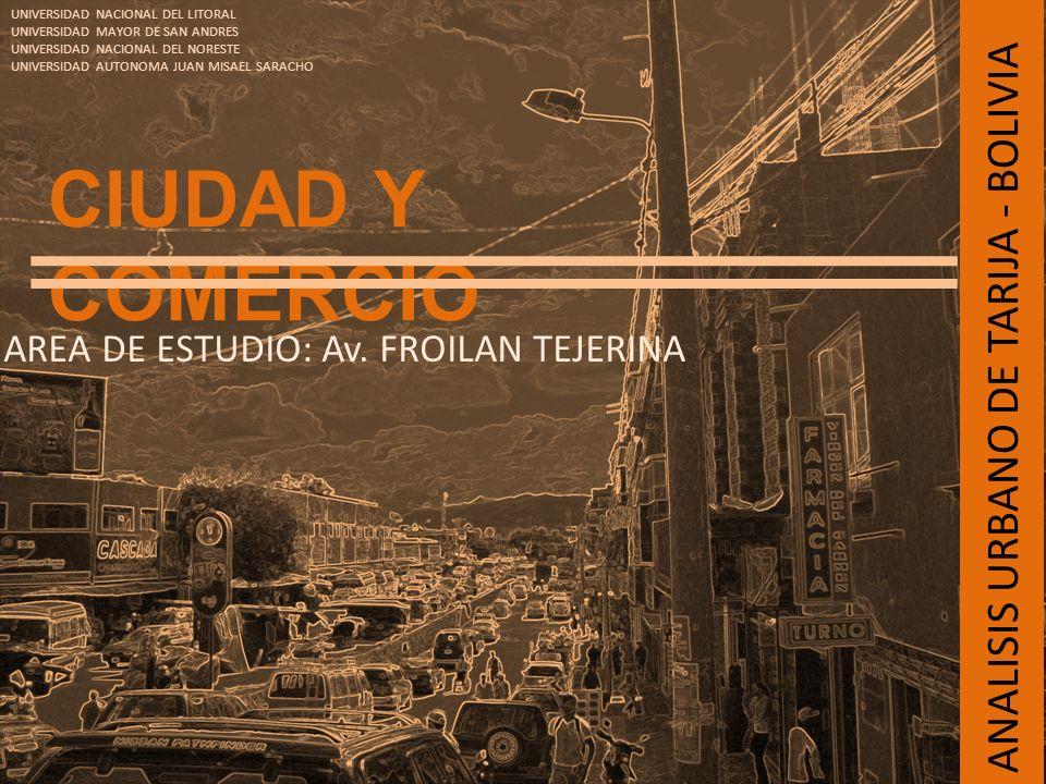 CIUDAD Y COMERCIO AREA DE ESTUDIO: Av. FROILAN TEJERINA