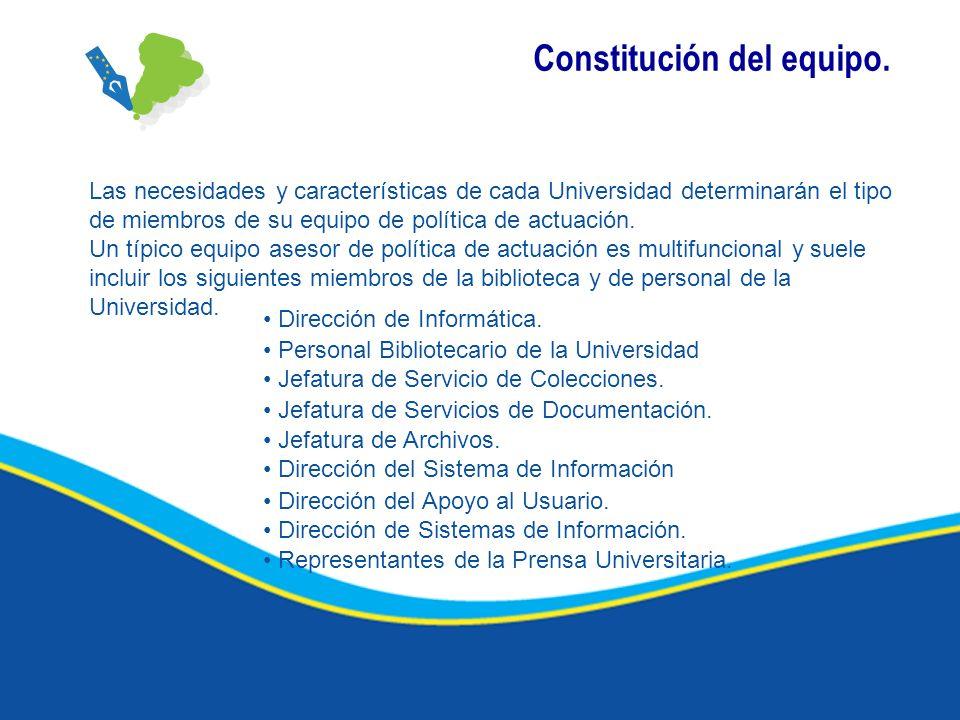 Constitución del equipo.