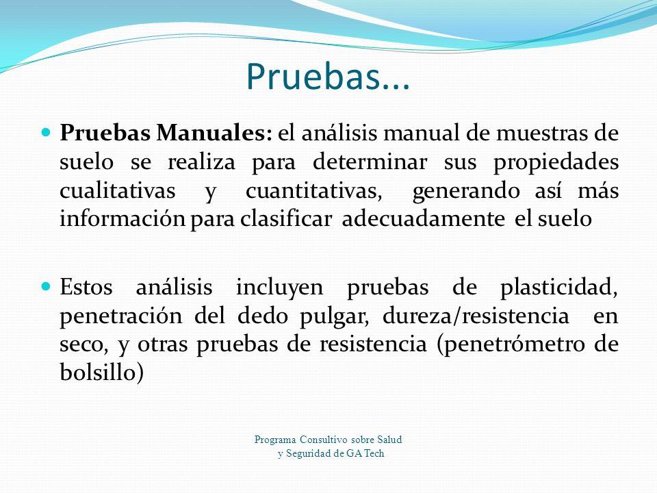 Programa Consultivo sobre Salud