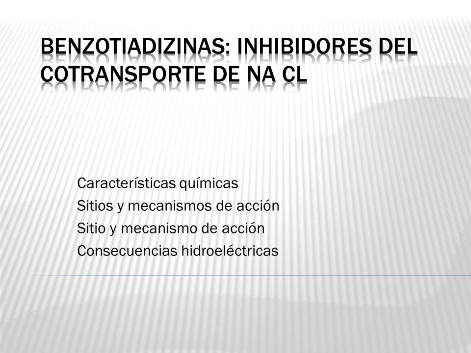 Benzotiadizinas: Inhibidores del cotransporte de NA CL