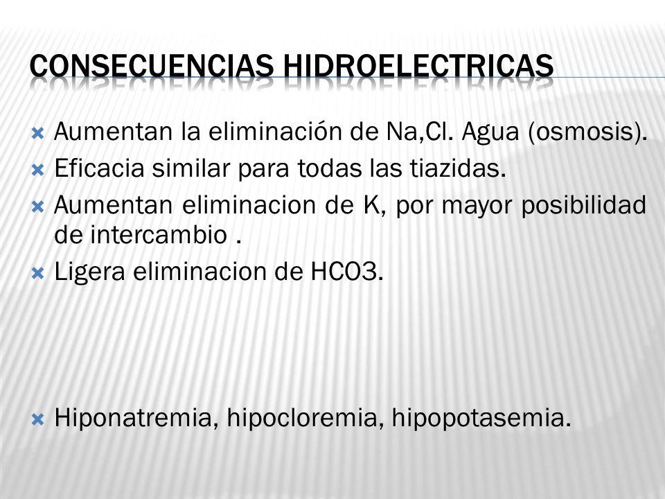 Consecuencias hidroelectricas