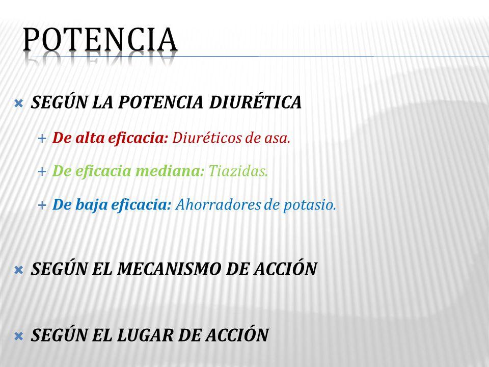 POTENCIA SEGÚN LA POTENCIA DIURÉTICA SEGÚN EL MECANISMO DE ACCIÓN