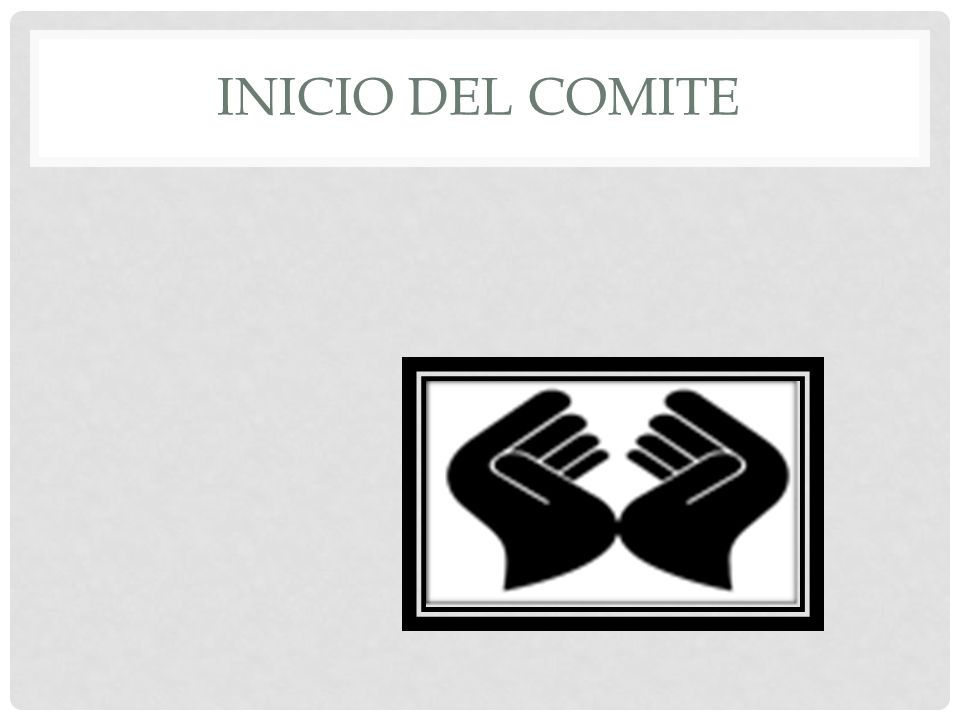 INICIO DEL COMITE