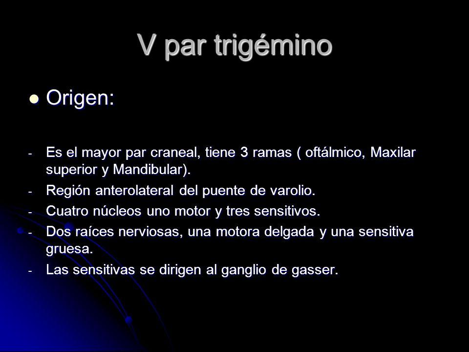 V par trigémino Origen: