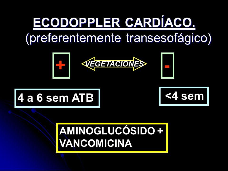 ECODOPPLER CARDÍACO. (preferentemente transesofágico)