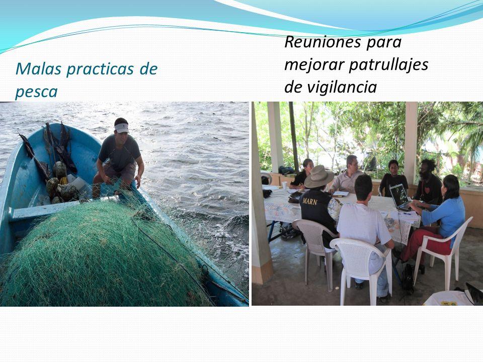 Malas practicas de pesca