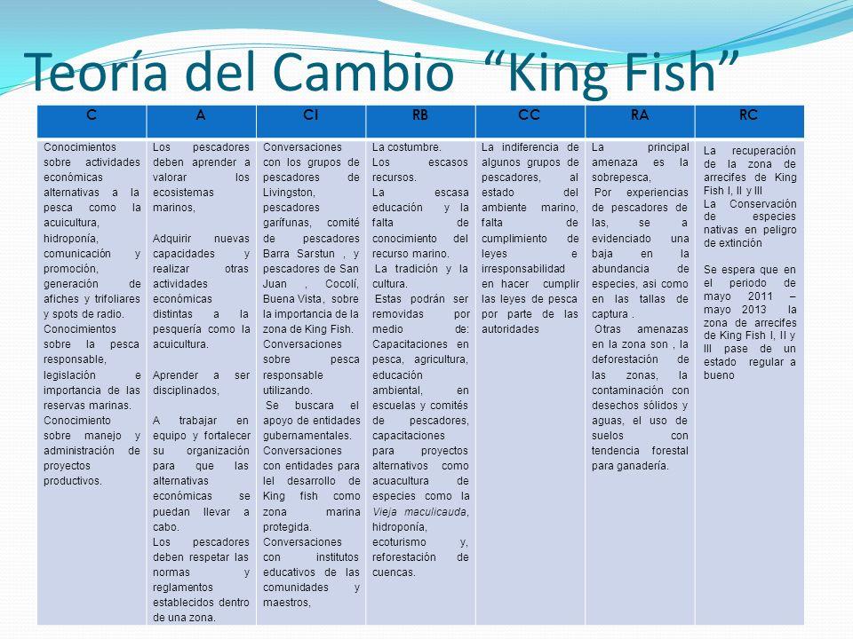 Teoría del Cambio King Fish