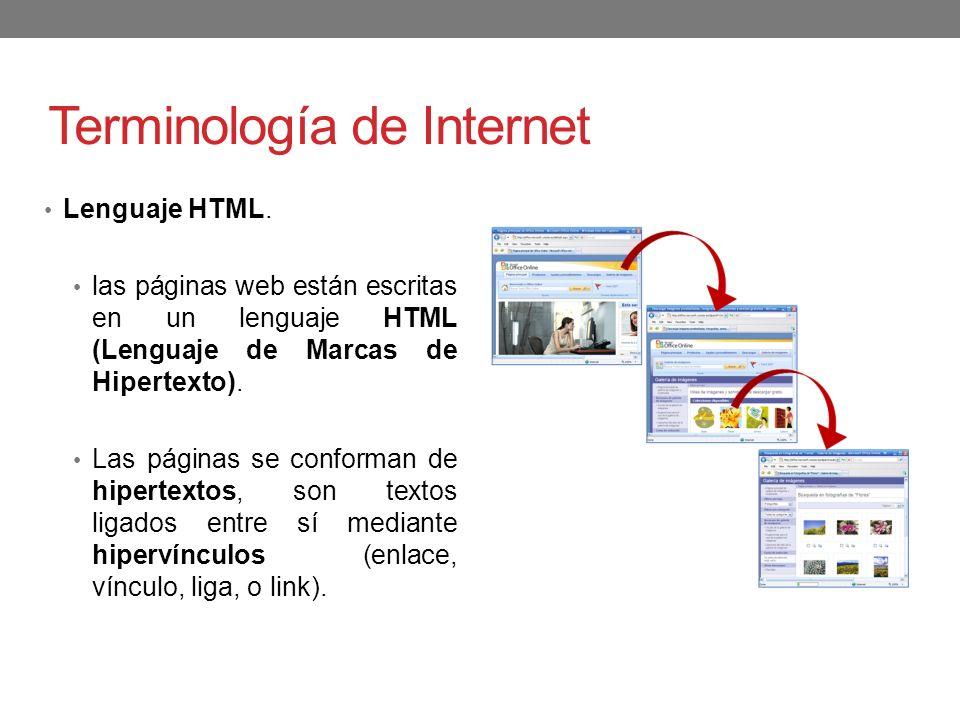 Terminología de Internet