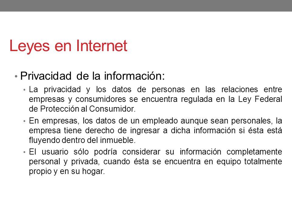 Leyes en Internet Privacidad de la información: