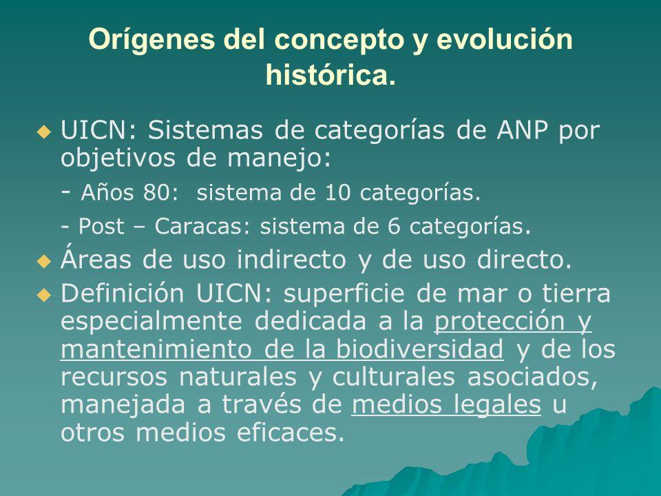 Orígenes del concepto y evolución histórica.