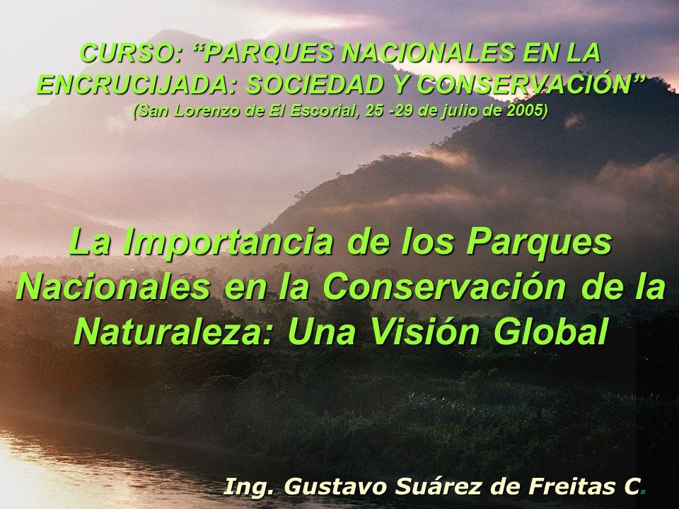Ing. Gustavo Suárez de Freitas C.