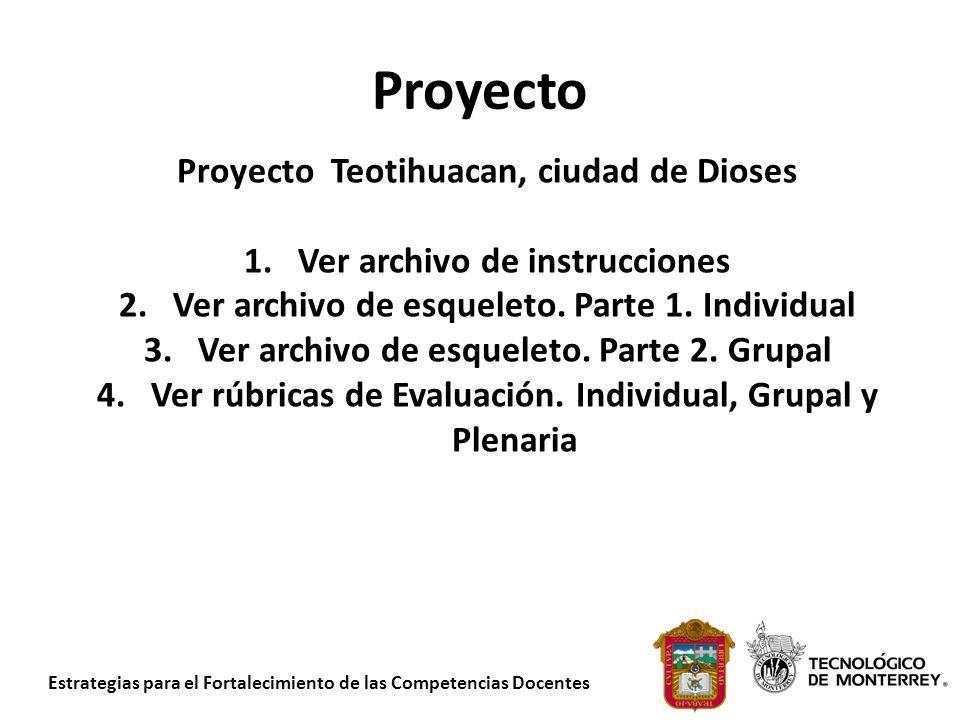 Proyecto Proyecto Teotihuacan, ciudad de Dioses
