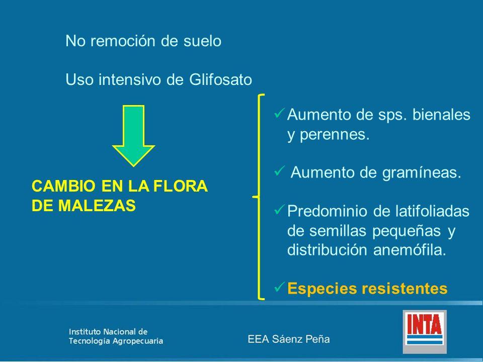No remoción de suelo Uso intensivo de Glifosato. Aumento de sps. bienales y perennes. Aumento de gramíneas.