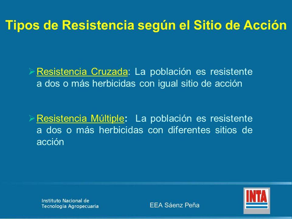 Tipos de Resistencia según el Sitio de Acción