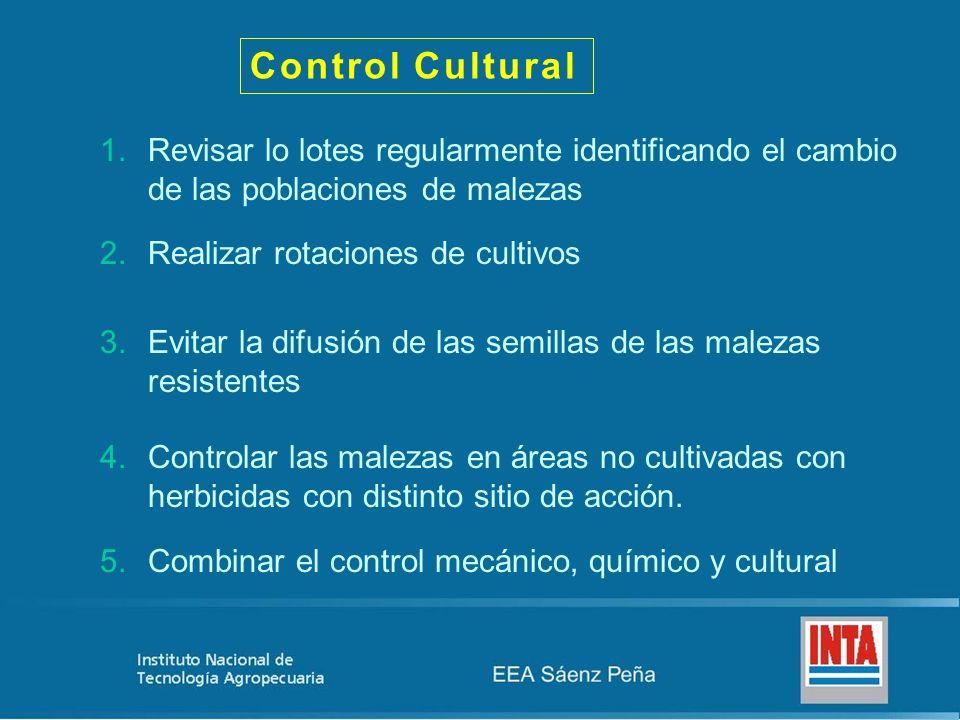 Control Cultural Revisar lo lotes regularmente identificando el cambio de las poblaciones de malezas.