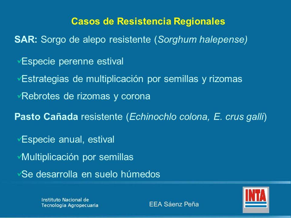 Casos de Resistencia Regionales